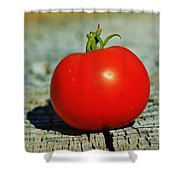 Summer Red Tomato Shower Curtain