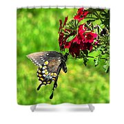 Summer Refreshment Shower Curtain