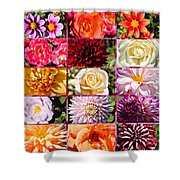 Summer Roses And Dahlias 2013 Shower Curtain