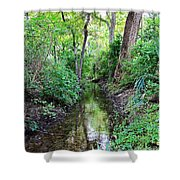 Summer Scene 1 Shower Curtain