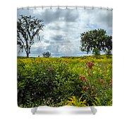 Summer Scene Shower Curtain