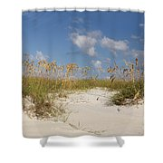 Summer Sea Oats Shower Curtain