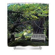 Summer Shade 4 Shower Curtain
