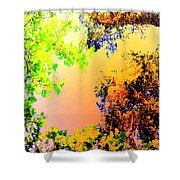 Looking Right Up Into The High Summer Sky Shower Curtain
