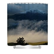 Summer Snow Shower Curtain