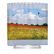 Summer Spectacular - Red Kites Over Poppy Fields Shower Curtain