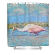 Summer Spoonbill Shower Curtain