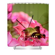 Summer Visitor Shower Curtain
