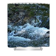 Summer Waters Shower Curtain