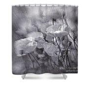 summer whipsers IIII Shower Curtain