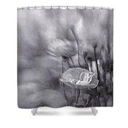 Summer Whispers Iv Shower Curtain by Priska Wettstein