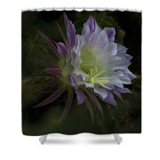 Summer Whispers  Shower Curtain