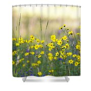 Summer Wildflowers On The Rim  Shower Curtain
