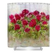 Summer's Blush Shower Curtain