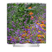 Summer's Colors Shower Curtain