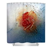 Summers Delight Shower Curtain