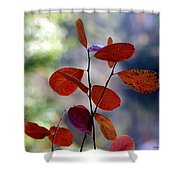 Summer's End Shower Curtain by Brian Wallace