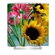 Summer's End Xiii Shower Curtain