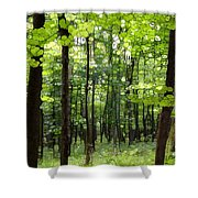 Summer's Green Forest Abstract Shower Curtain