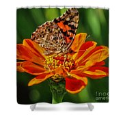 Summers Last Butterfly Shower Curtain