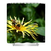 Summertime Bee Shower Curtain