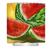 Summertime Delight Shower Curtain