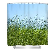 Summertime Grass Shower Curtain
