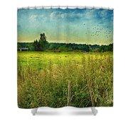 Summertime Shower Curtain by Jutta Maria Pusl
