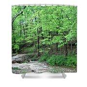 Summertime Walnut Creek Shower Curtain
