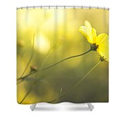Summertime Warmth Shower Curtain