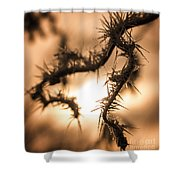 Sun And Frost Shower Curtain