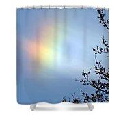 Sun Dawg Shower Curtain