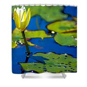 Sun Drenched Lilly  Shower Curtain