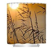 Sun Flood Shower Curtain