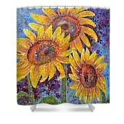 Sun-kissed Beauties Shower Curtain