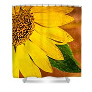Sun-kissed Sunflower Shower Curtain