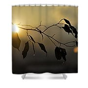 Sun Leaves Shower Curtain