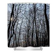 Sun Lit Frozen Rain 2 Shower Curtain