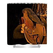 Sun On Leather Horse Saddle In Tack Room Equestrian Fine Art Photography Print Shower Curtain