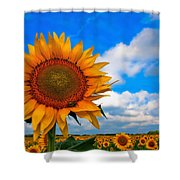 Sun On My Face Shower Curtain