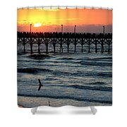 Sun Over Pier And Bird In Surf Shower Curtain