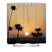 Sun Rise On Bethsaida Shower Curtain