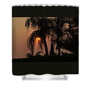 Sun Setting Behind The Queen Palm Covered In Smoke Shower Curtain