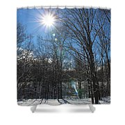 Sun Though The Trees  Shower Curtain