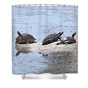 Sun Turtles Shower Curtain