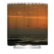 Sun Up With Birds Shower Curtain