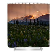 Sunbeam Garden Shower Curtain