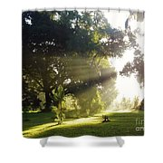 Sunbeam Landscape Shower Curtain