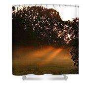Sunbeams And Fog Shower Curtain