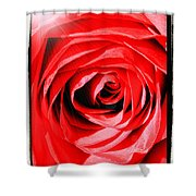 Sunburst On Red Rose With Framing Shower Curtain
